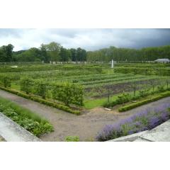 Paseo Versalles y el huerto del Rey
