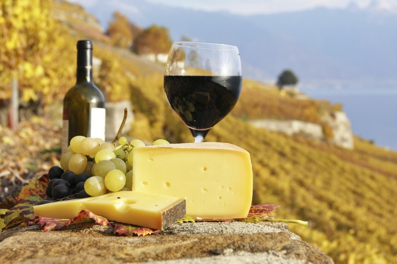 All Inclusive 9 Day Gourmet Wine Tour Of France