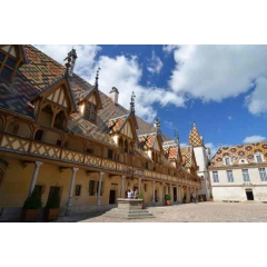 Wine tour in France