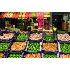 Private visit Rungis Market