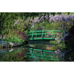 Giverny and Auvers sur Oise Tour