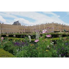 Circuit Versailles/Potager du roi